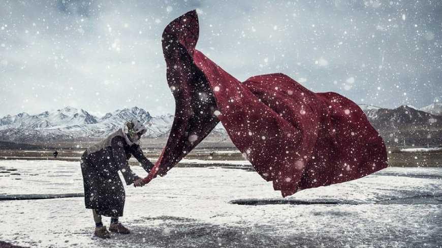 Sony Dünya Fotoğraf Yarışması Sonuçları Kadın